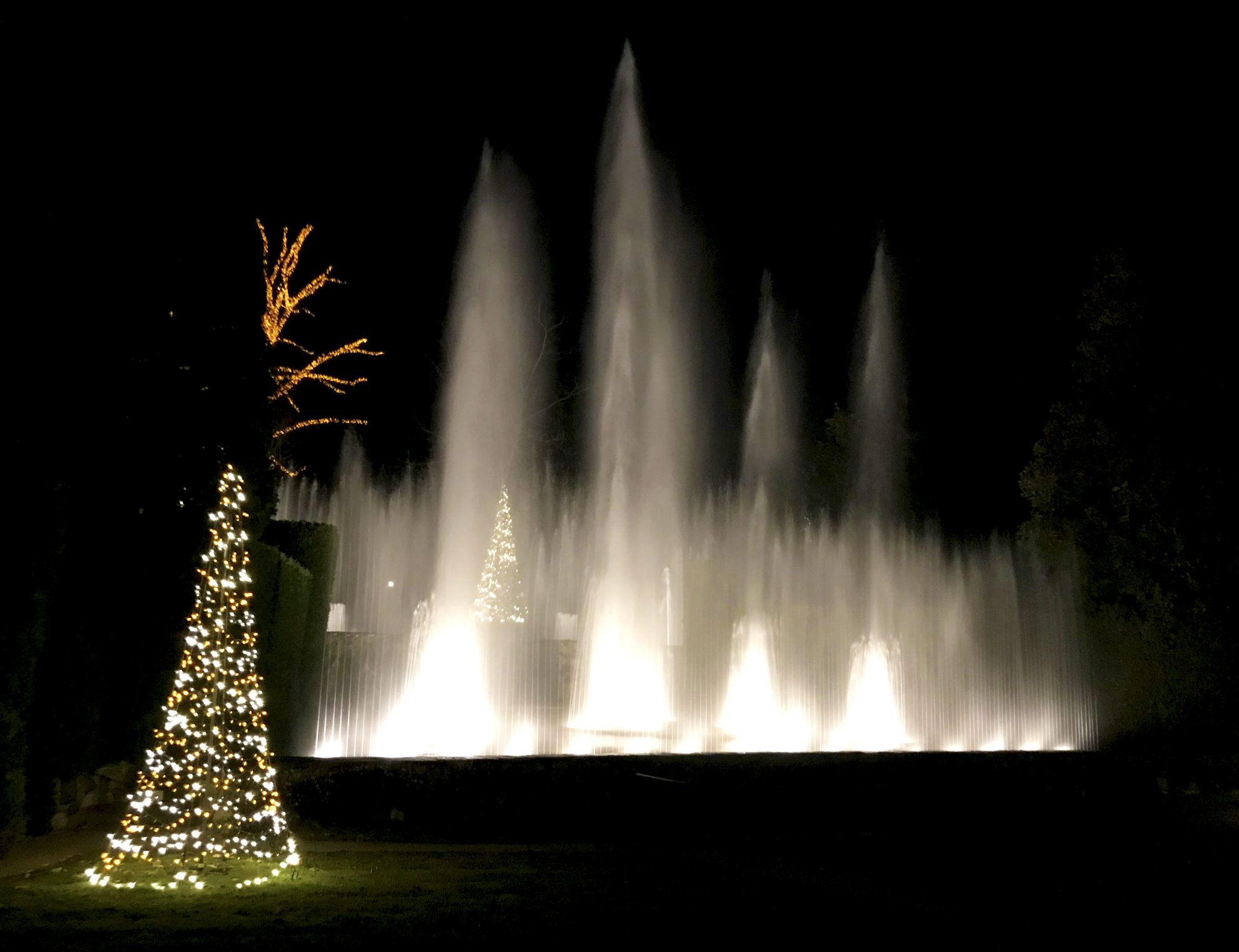 Beautiful fountain show at Longwood Gardens Holiday Lights