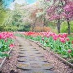 Garden path lined with flowers is party of secret garden meditation for anxiety and stress relief