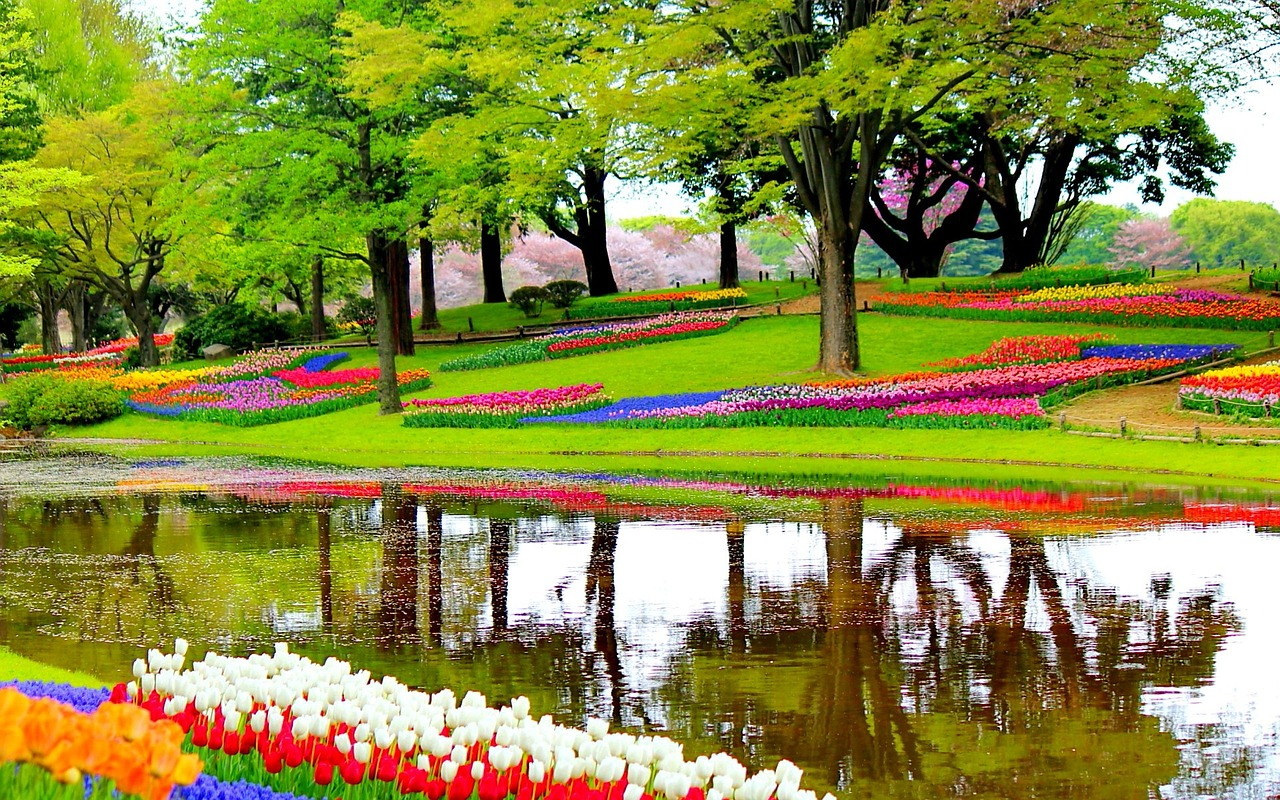 Keukenhof gardens in Lisse, Netherlands is one of the most beautiful holiday destinations in the world